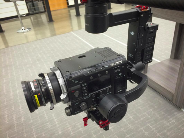 Will the Canon C300ii and C100ii fit on the Ronin M?