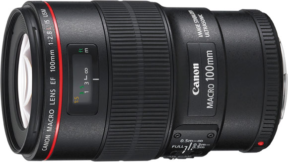 Canon EF 50mm f/2.5 Compact Macro Lens 2537A003 B&H Photo Video